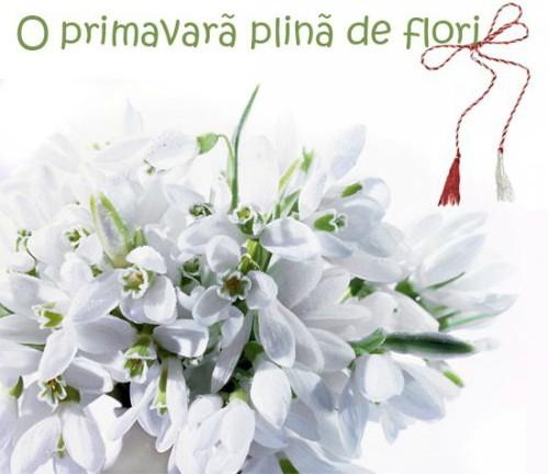 Felicitări cu ocazia sosirii primăverii!