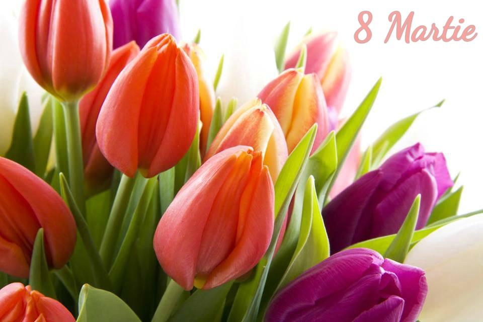 Felicitări cu ocazia Zilei Internaționale a Femeii!