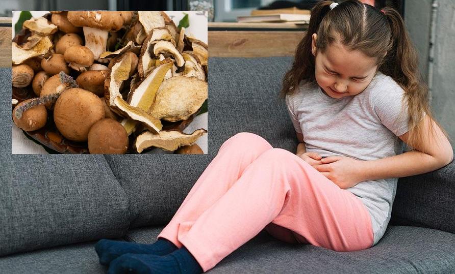 Alarmant! 10 copii intoxicați cu ciuperci în doar trei zile